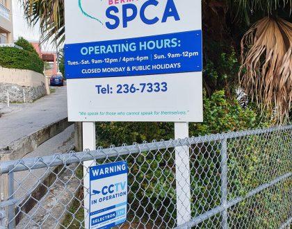 Bermuda-SPCA-Upgrade-CCTV-Camera-System-at-Valley-Road,-Paget-Facility-1